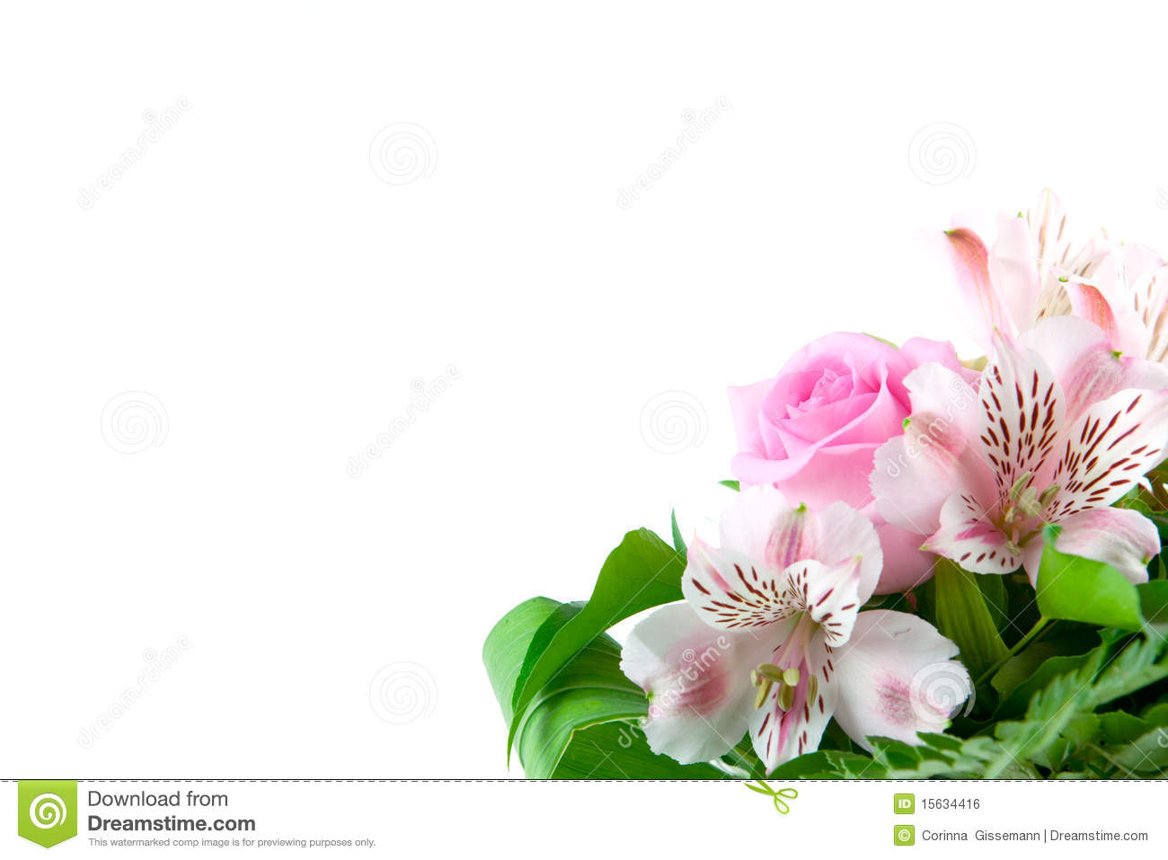 Flower Greetings Stock Photo Image Of Natural Space 15634416