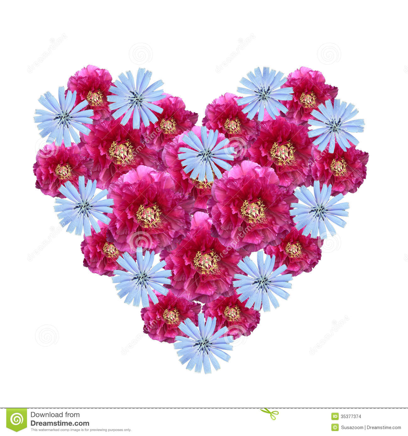 Flower Heart Made Cutout Peony And Corn Flowers Stock Image 3537
