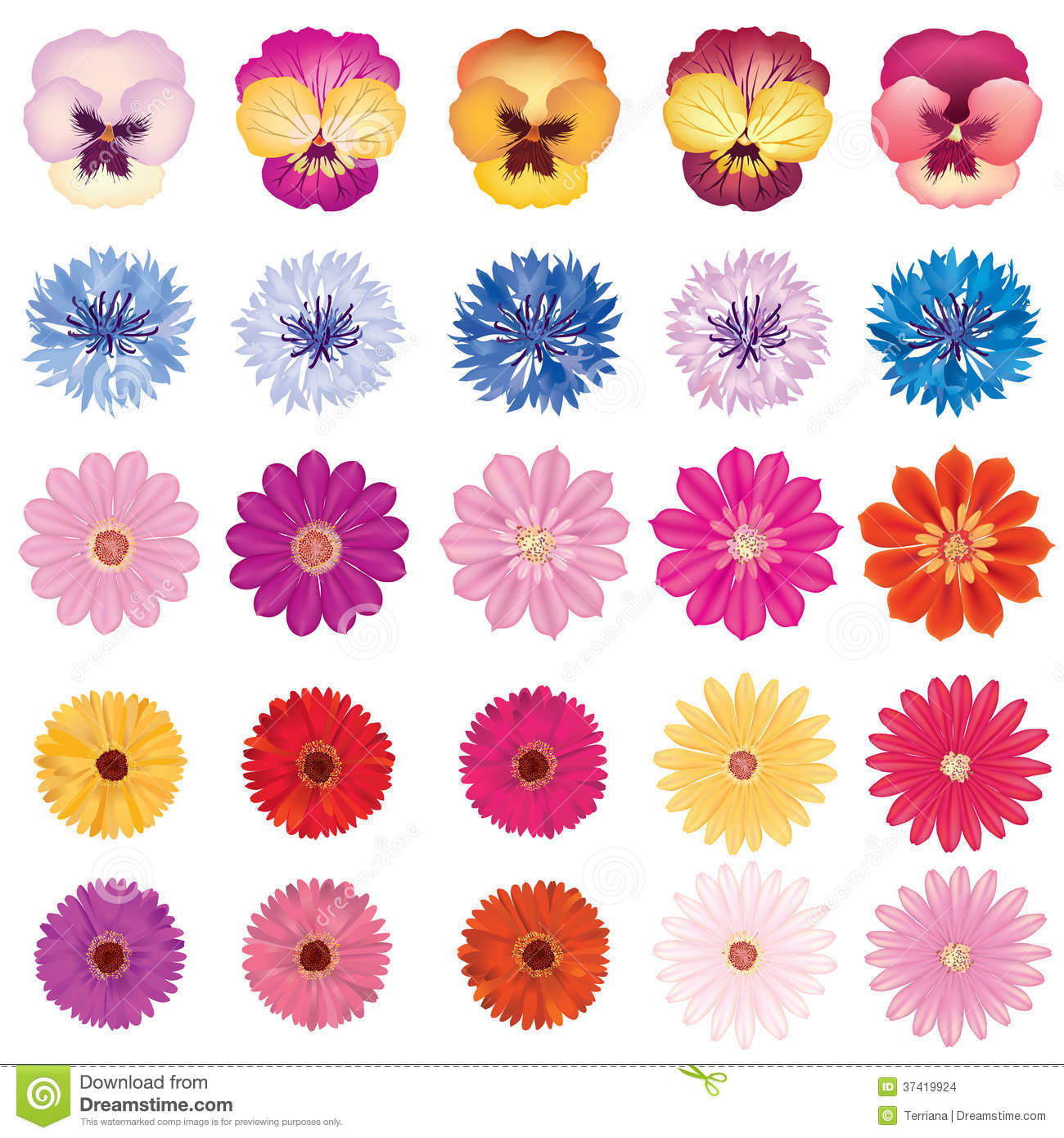 Flower icon set bloom collection on white background stock background bloom collection flower icon dhlflorist Images