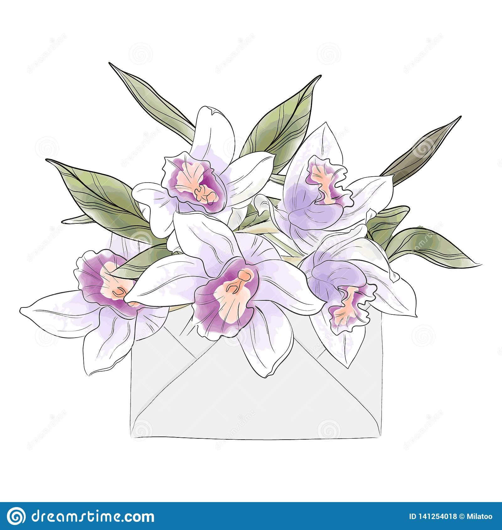 Flower Letter With Watercolor Orchids Vector Elegant Hand Drawn Invitation Summer Blossom Luxury Sketch Woman S Day Card Stock Vector Illustration Of Light Bouquet 141254018