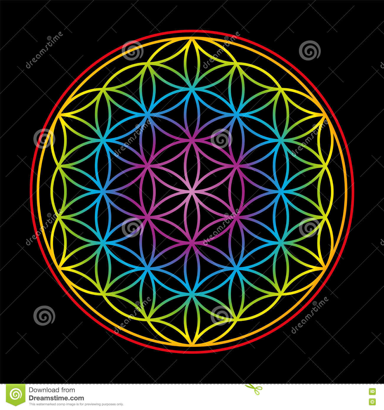 Flower Of Life Colorful On Black Background Stock Vector