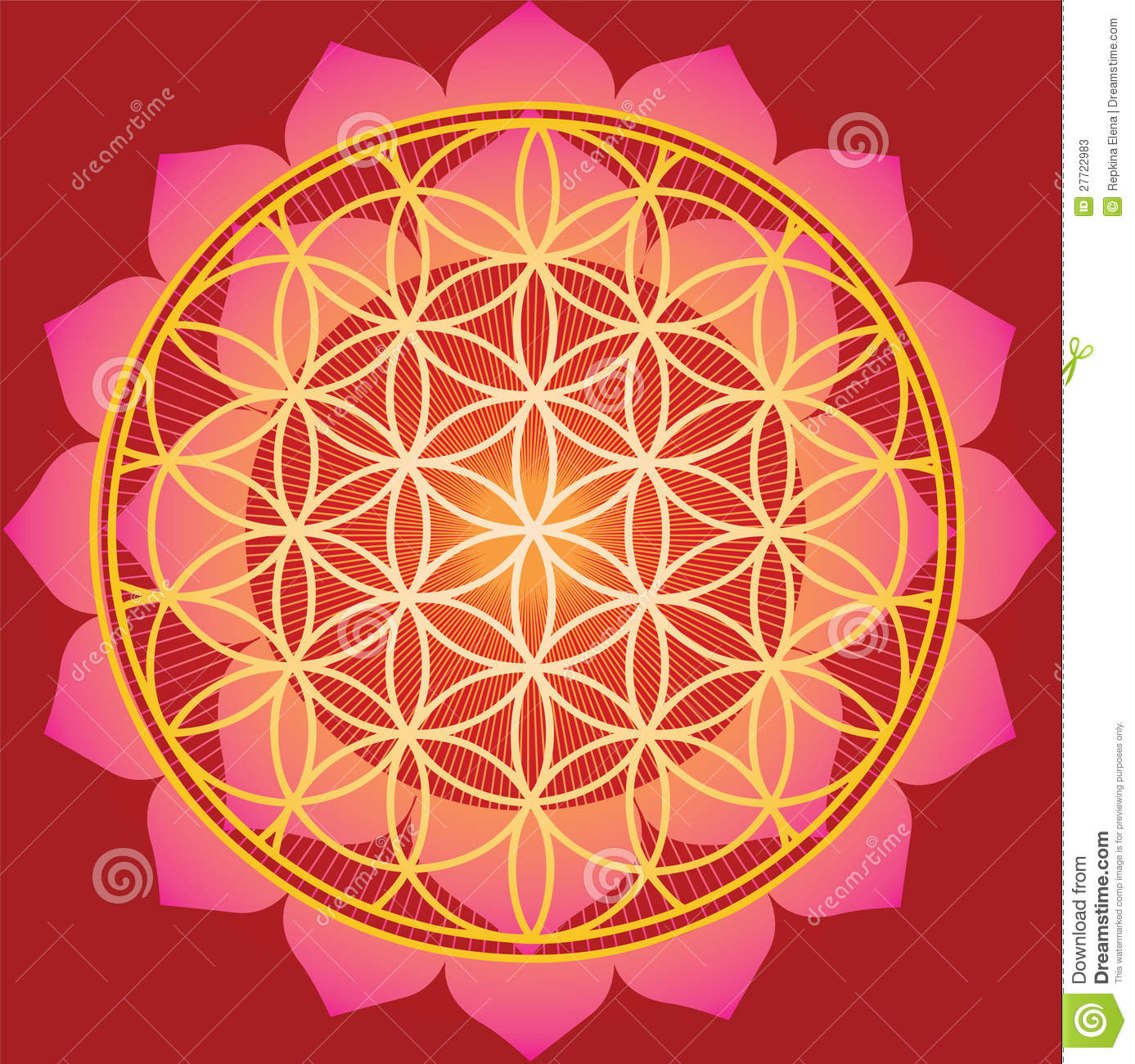 Flower Of Life In Red Lotus Stock Vector Illustration Of Indian