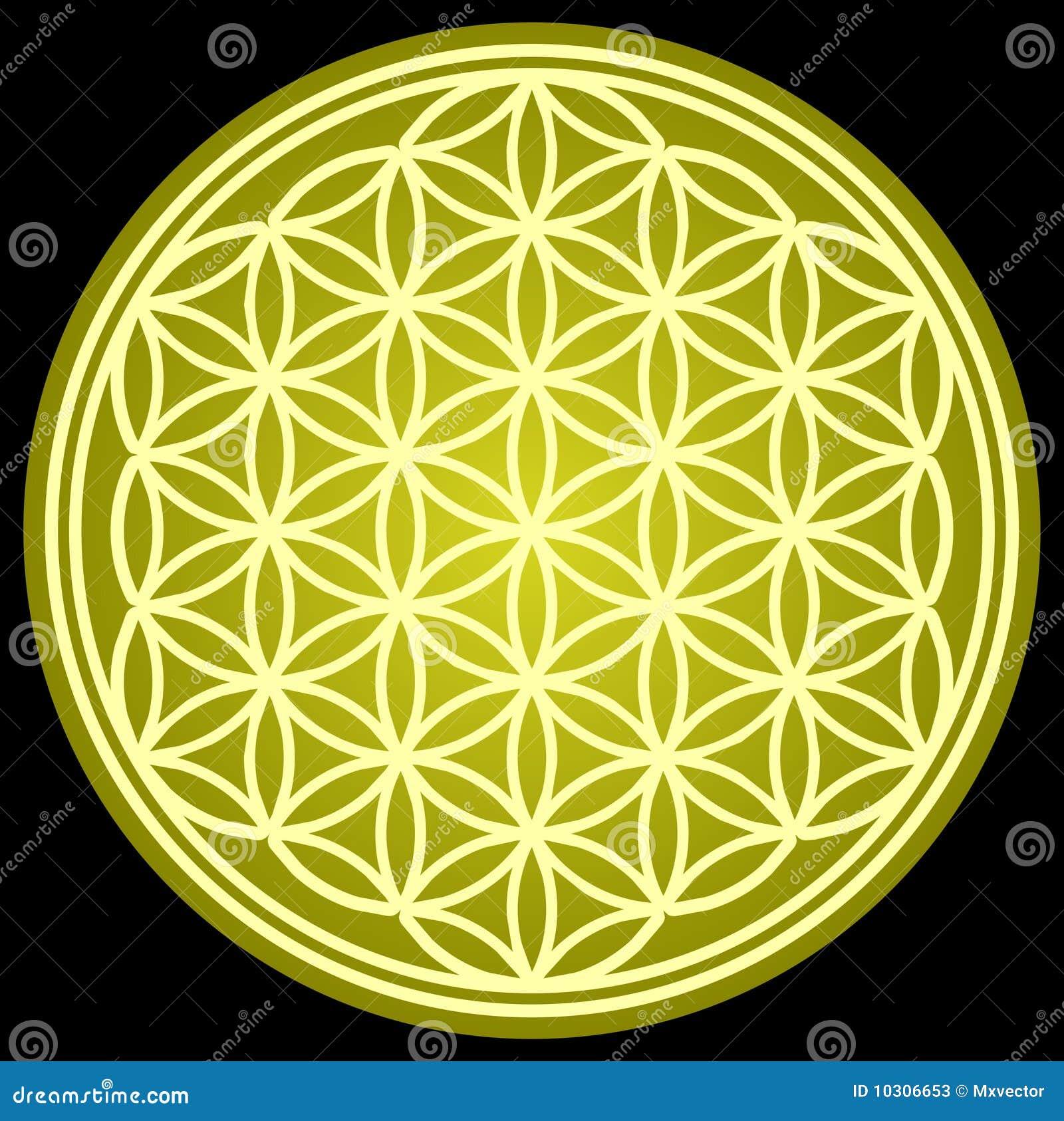 Flower Of Life Sacred Geometry Stock Vector Illustration Of