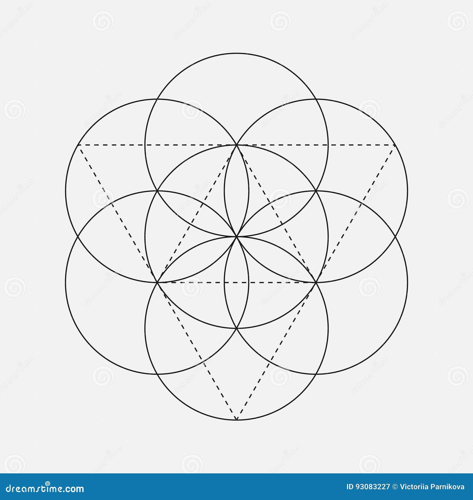 flower of life sign geometric symbol stock vector illustration of
