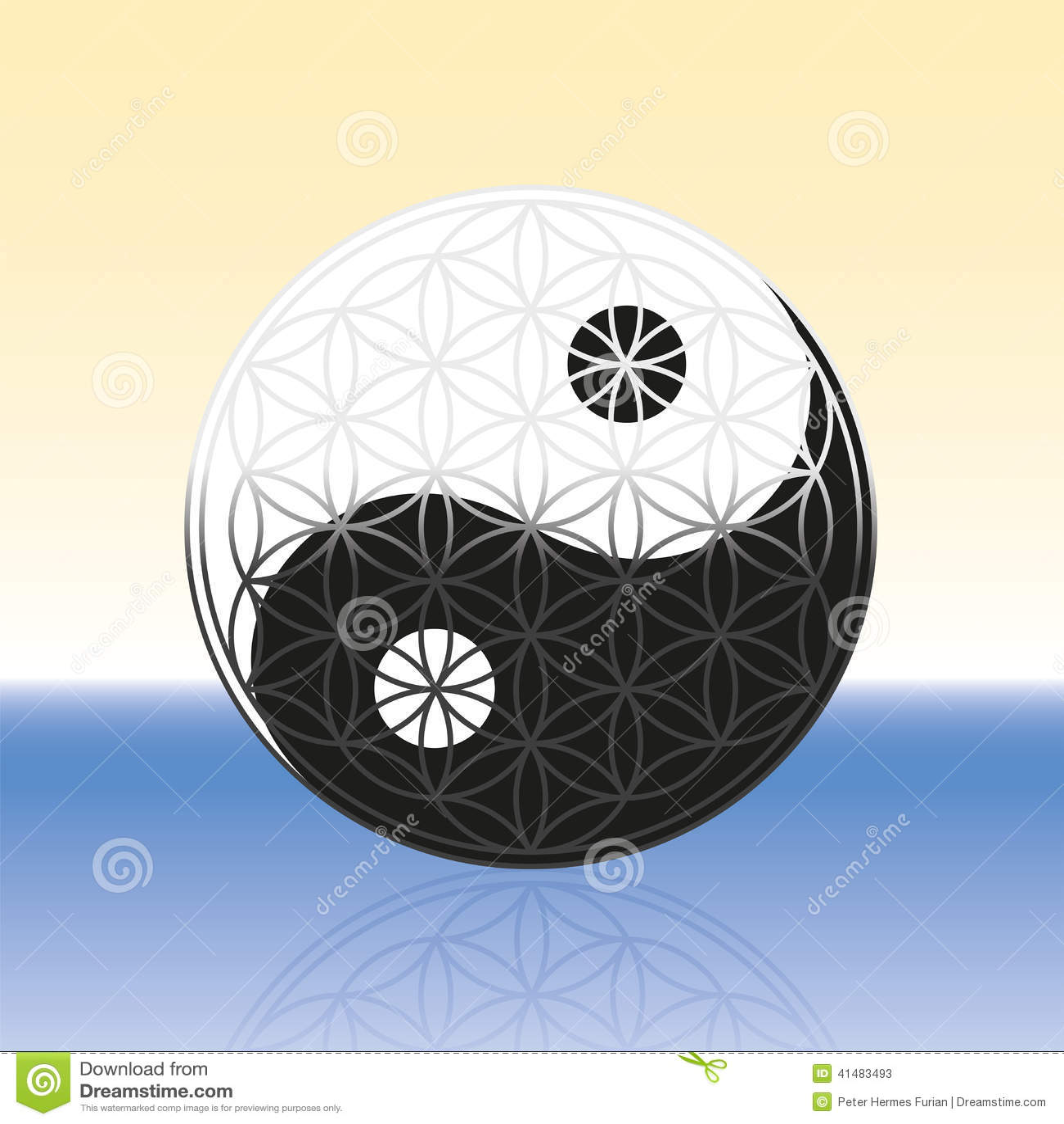 Flower Of Life Yin Yang Spheres Stock Photo