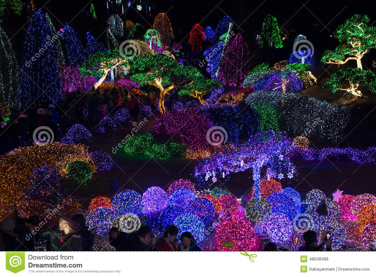 Flower Light festival at night Garden morning calm