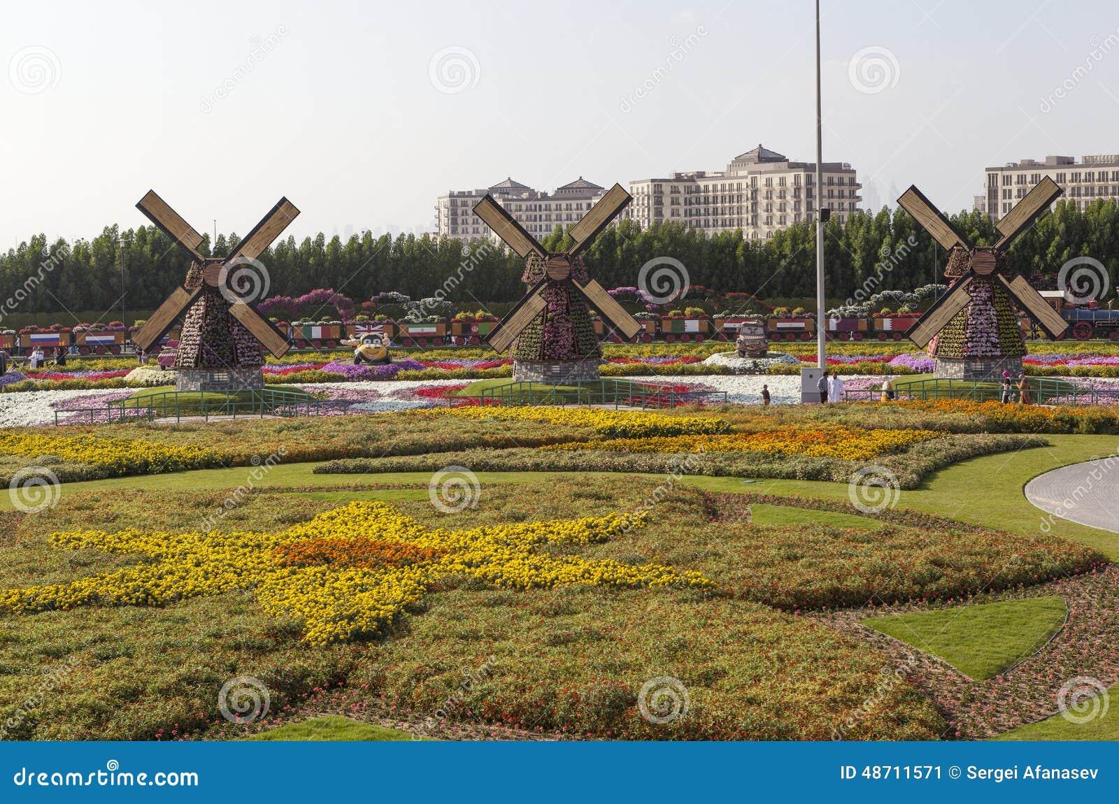 Flower Park In Dubai (Dubai Miracle Garden). United Arab Emirates ...
