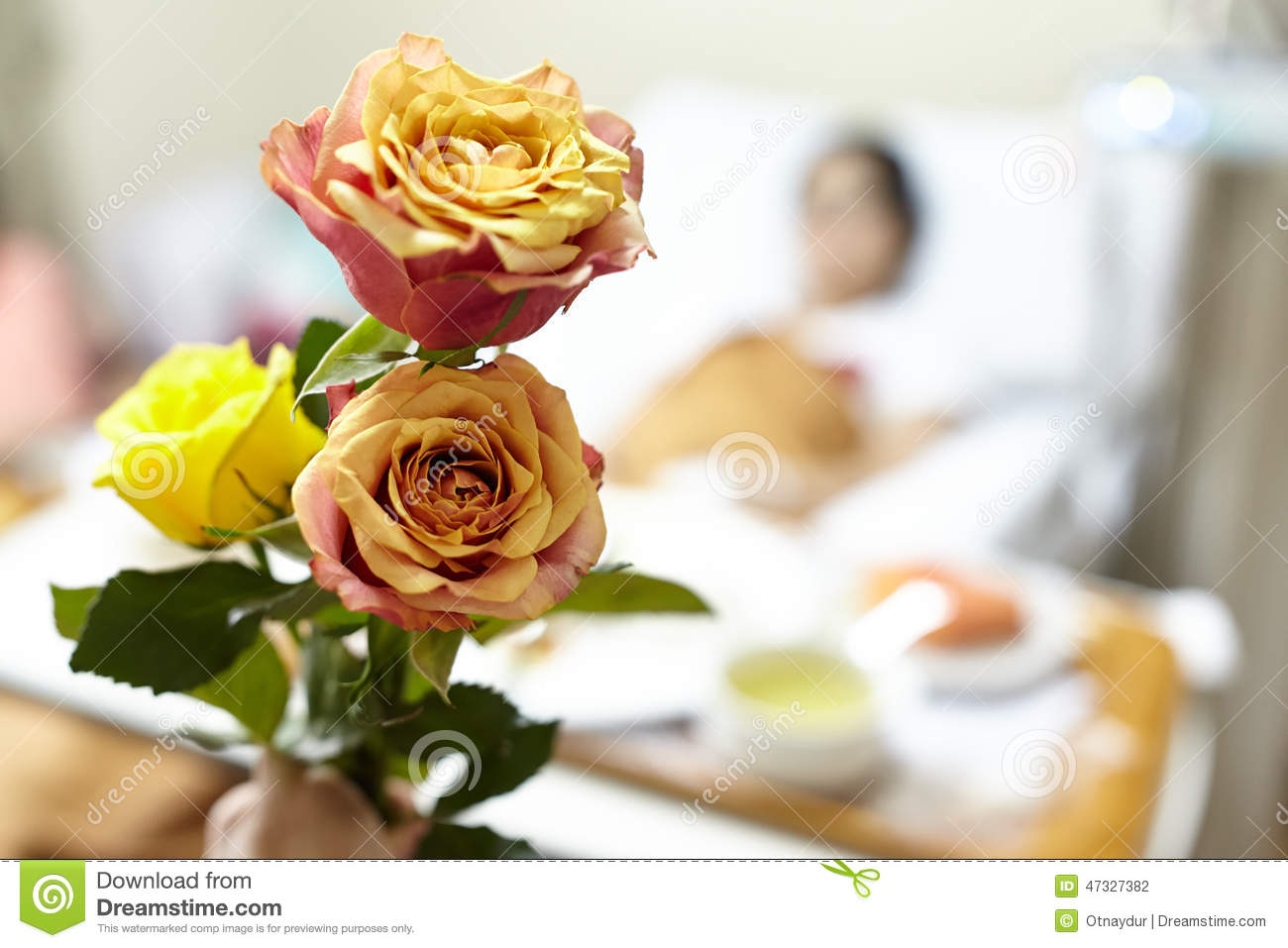 Flower For Patient Stock Image