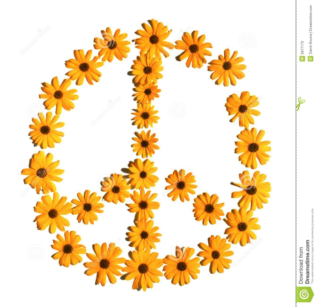 Flower Peace Sign Stock Image Image Of Peace Blossom 5877173