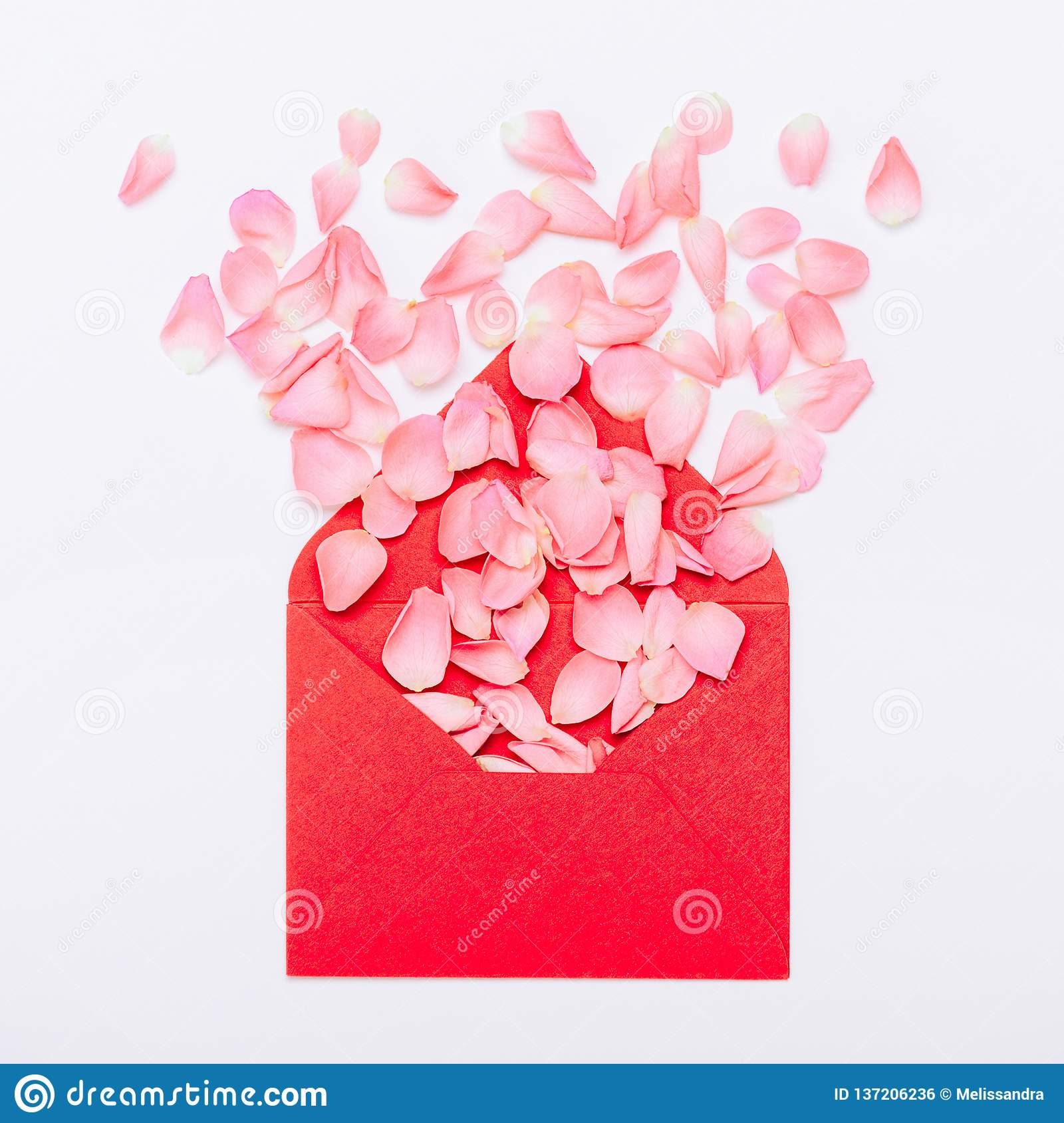 Flower petals in the envelope. A gift for Valentine`s, Women`s Day, Mother`s Day. Minimal composition, top view, flat