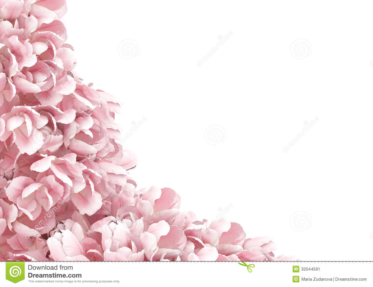 Flower Petals Stock Image Image Of Background Event