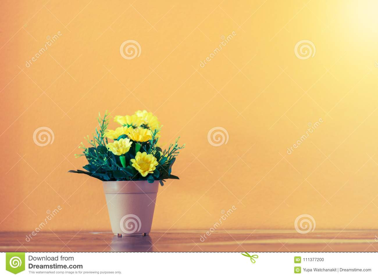 Flower and plant in pot on table