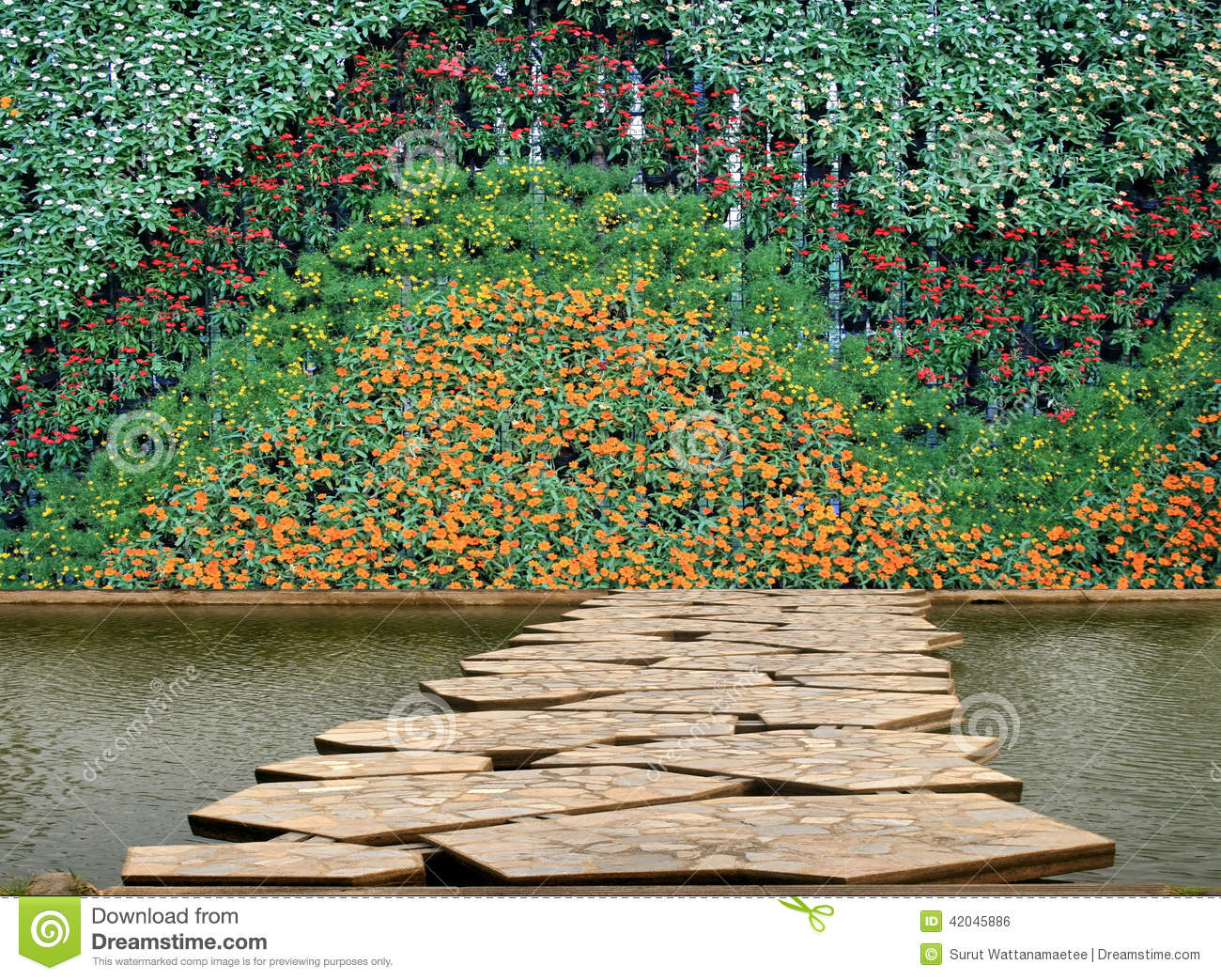 Flower and plant wall vertical garden stock image for Flower wall garden