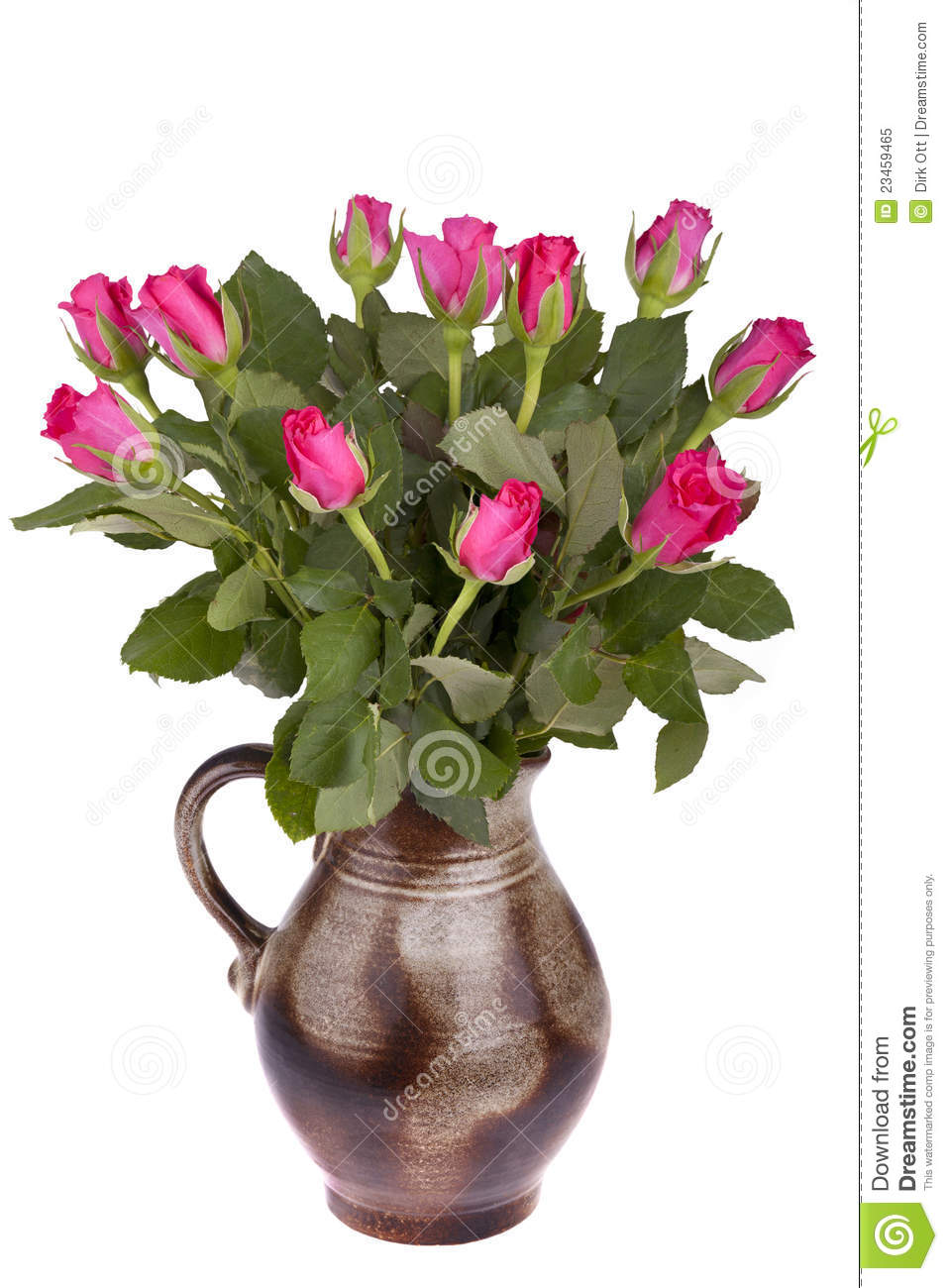 Flower Pot With Roses Stock Image Image Of Decoration