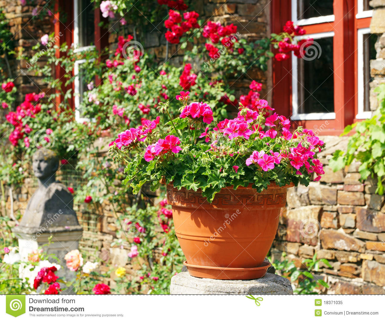 Flower Pot In Sunny Garden Royalty Free Stock Photo - designing a sunny garden