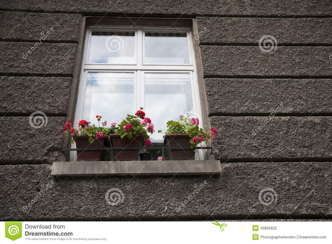 Delightful Flower Pots At Window Sill Stock Photography