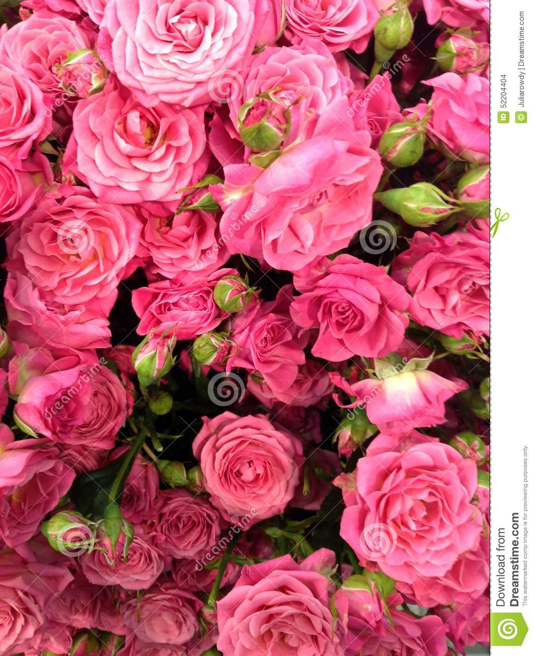 Flower power stock photo image of pile florist color 52204404 pile of beautiful flowers roses of rose color dozens of flowers of different colour flower show florist industry pack of izmirmasajfo