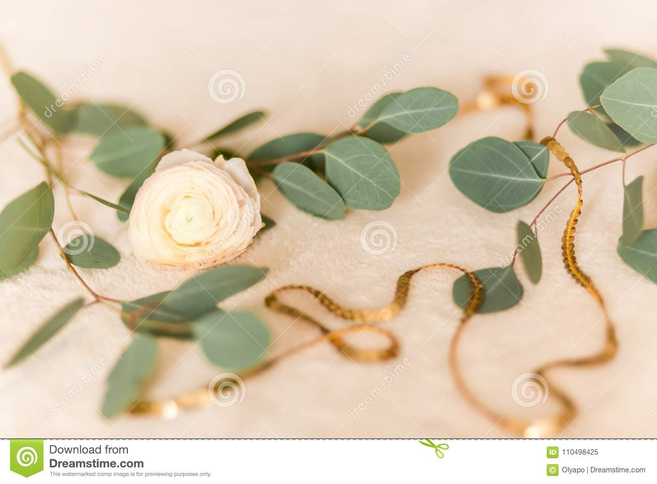 Flower Ranunculus With Eucalyptus Stock Image Image Of Blossom Color 110498425