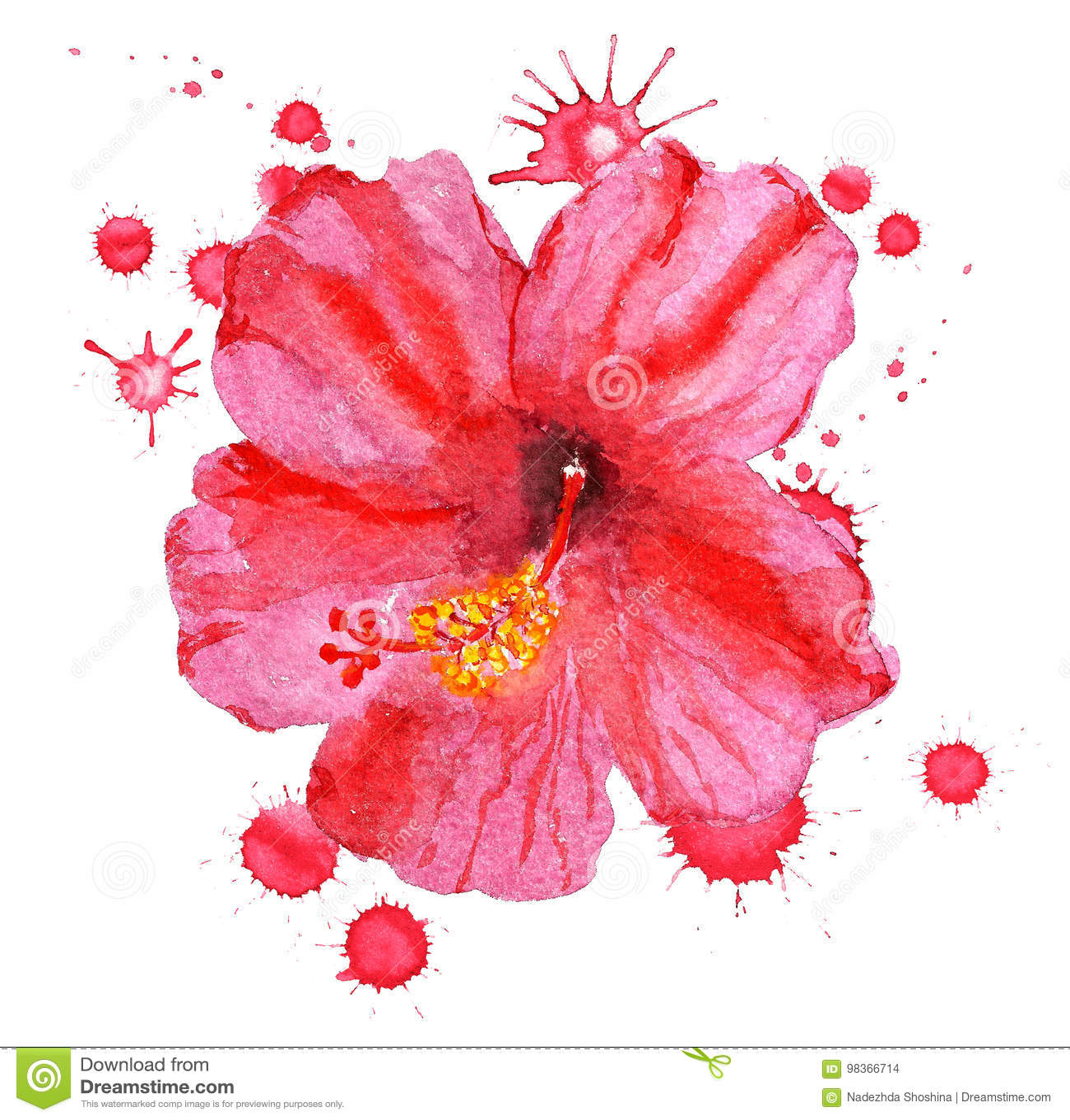 Flower Of Red Hibiscus Stock Illustration Illustration Of Craft