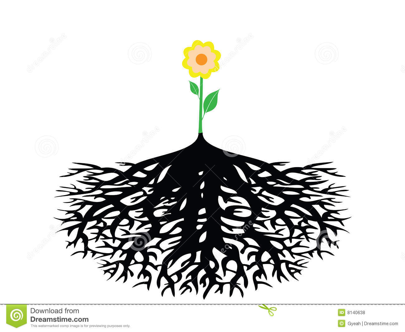 Flower With Root Isolated Royalty Free Stock Photos - Image: 8140638