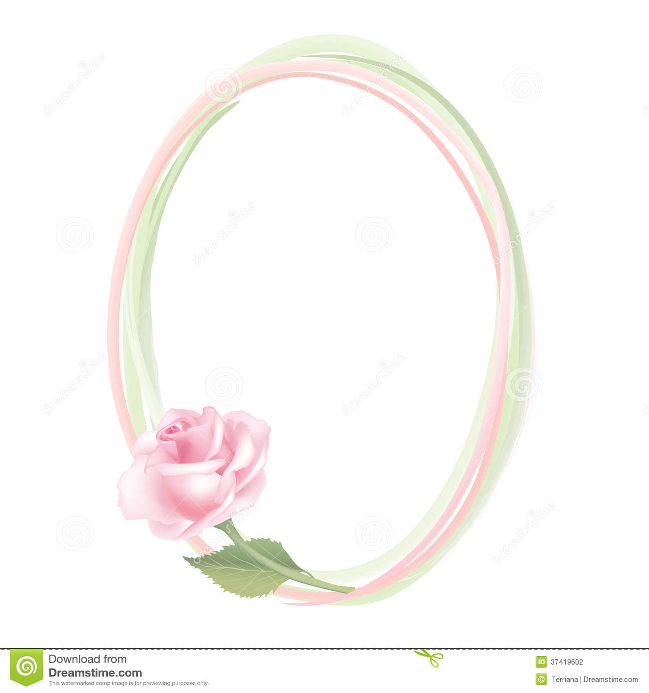 Flower rose frame on white background floral decor stock for Cadre floral mural