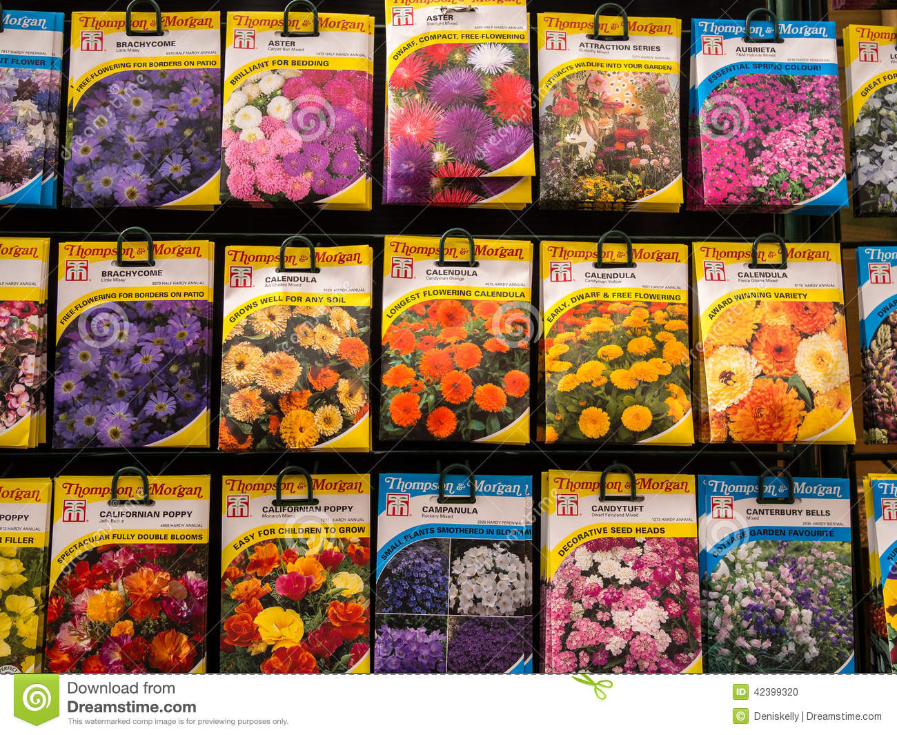 variety of flower seeds for sale in brightly coloured packets in a ...