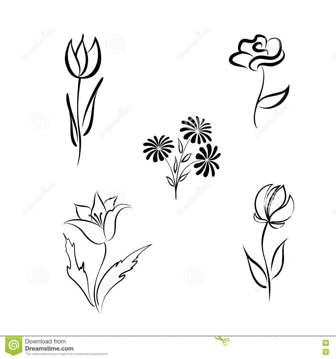 Flower Set Engraved Hand Drawing Floral Design Elements