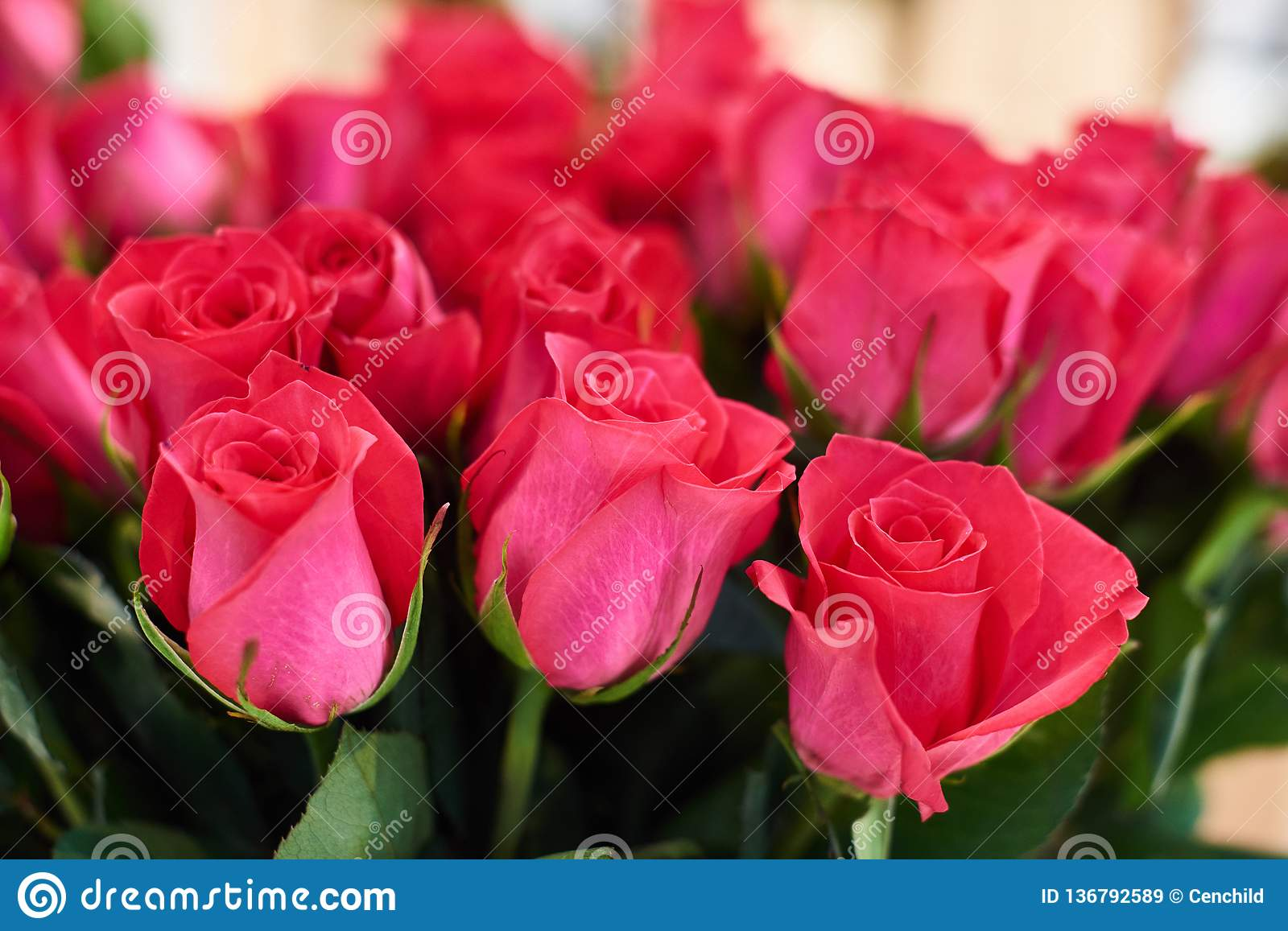 Flower Shop Concept Close Up Beautiful Lovely Bouquet Of