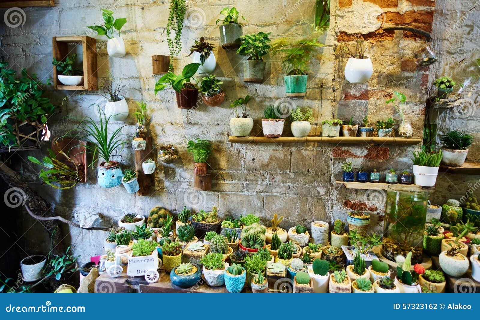 Flower shop stock photo. Image of sale, plants, interior - 57323162