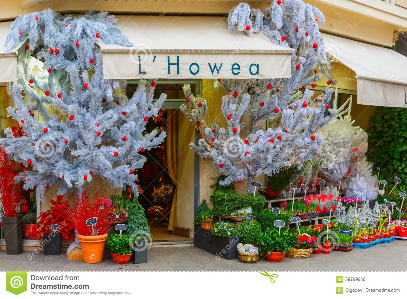 Flower Shop Hovea Paris Editorial Image Image Of Outside 58799660