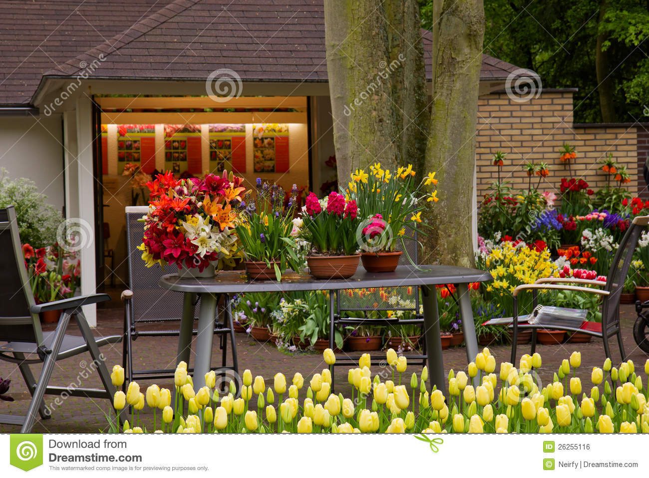 Flower Shop In Keukenhof Garden Stock Photo - Image of green, garden ...