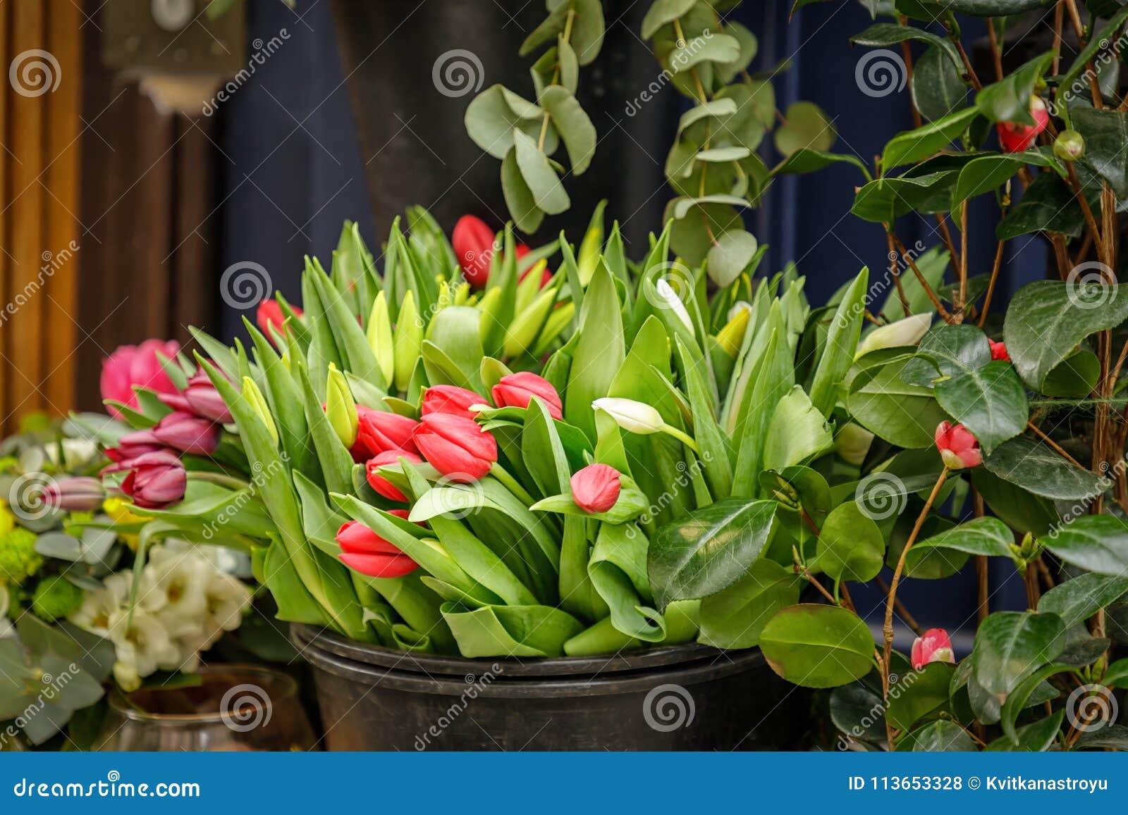Flower shop in paris france spring flowers tulips stock photo flower shop in paris france spring flowers tulips mightylinksfo