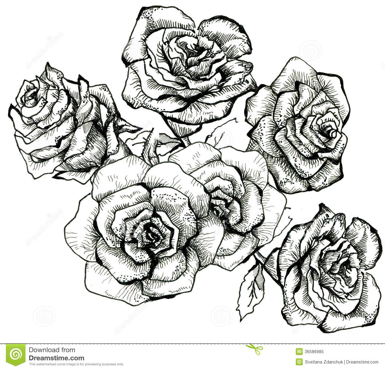 Flower Sketch Bouquet Stock Illustration Illustration Of Isolated