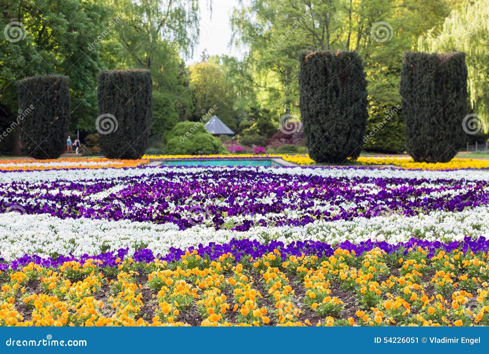 Flowerspring Flowers Outdoor Park Flowers Garden Stock Image