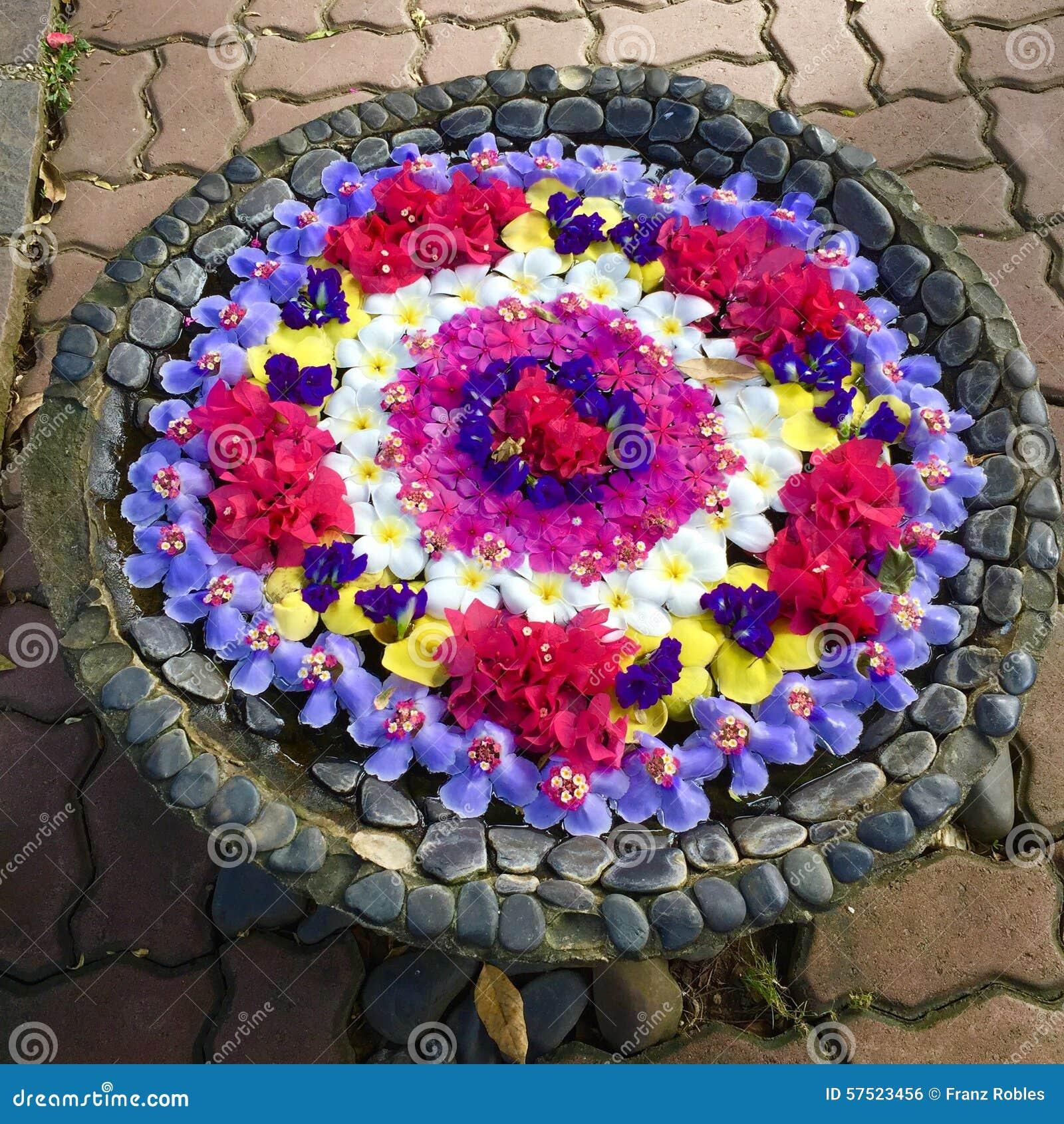 Flower Tub stock photo. Image of flowers, full, flower - 57523456