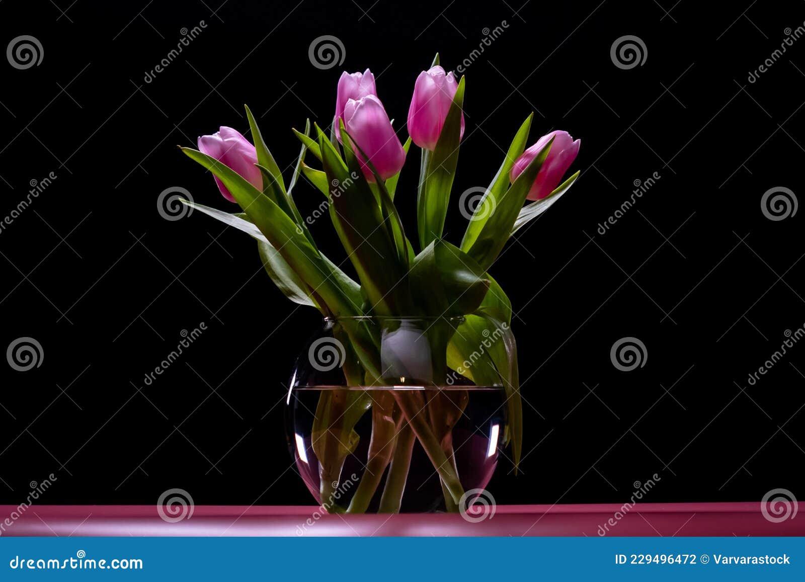Flower Tulip Bouquet Nature Leaf. Color Beauty Stock Photo