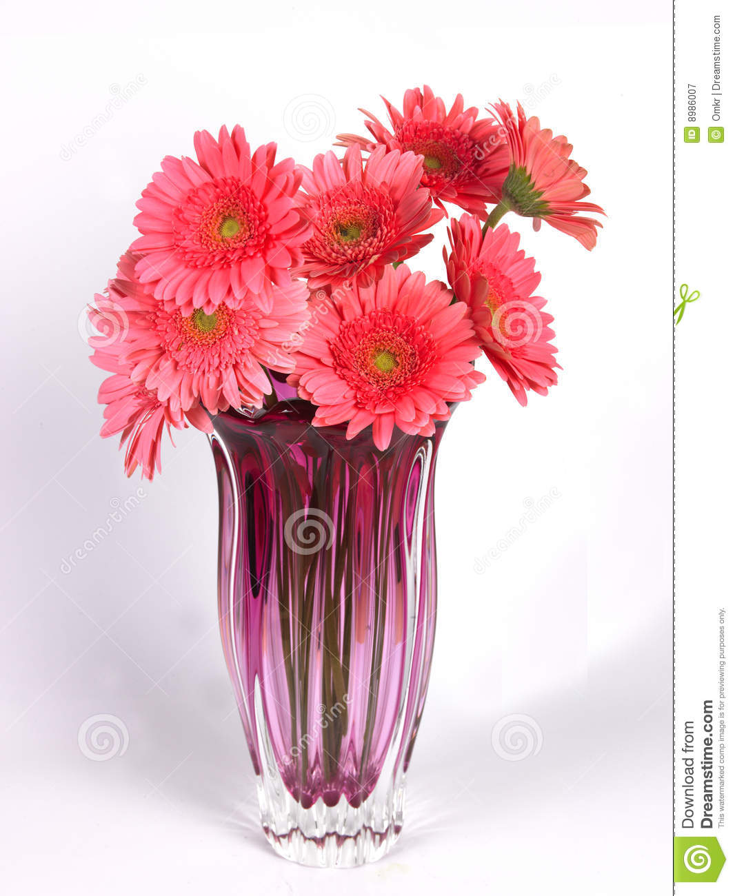 A flower vase with pink daisy flowers stock image image of pretty a flower vase with pink daisy flowers mightylinksfo
