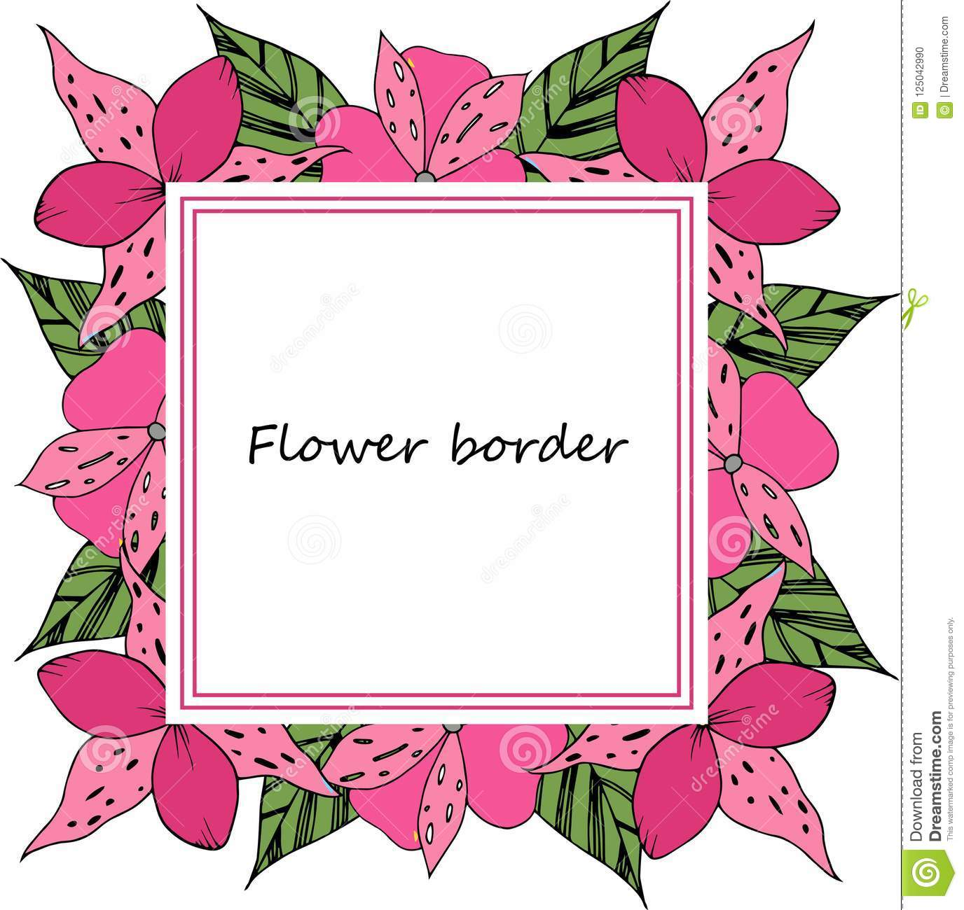 Flower Vector Drawing Frame Isolated Template Floral Wedding