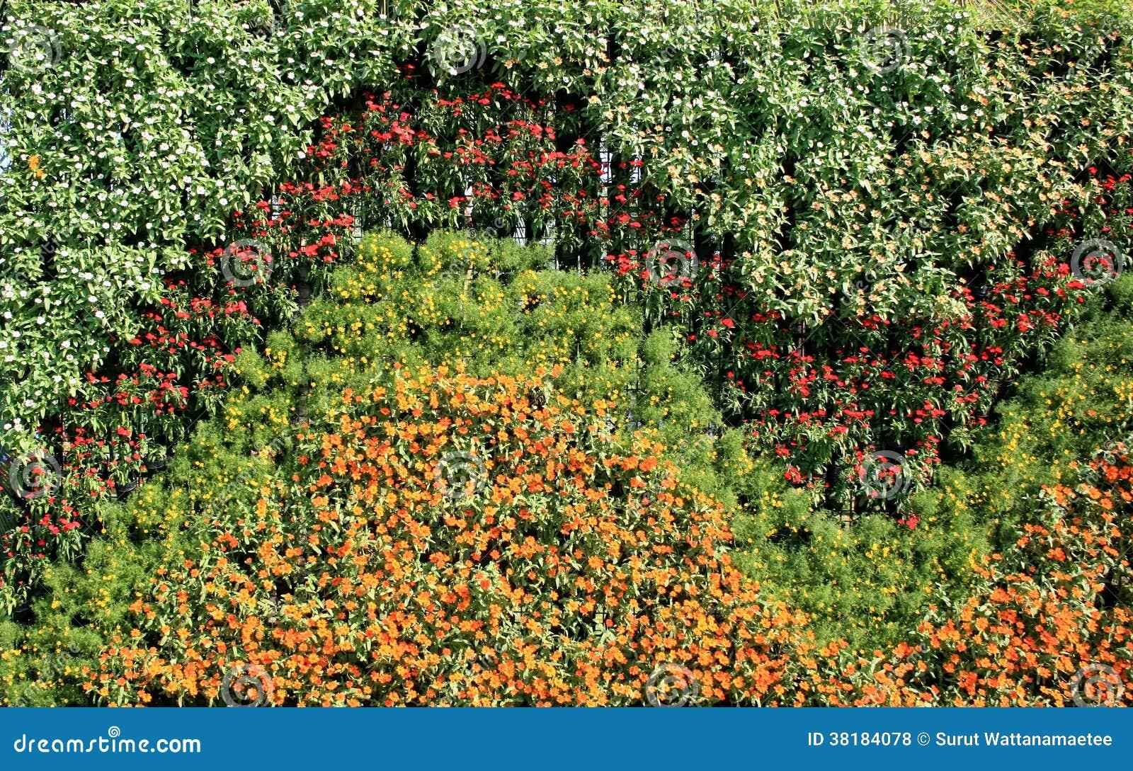 Flower Wall Vertical Garden Stock Photo Image 38184078