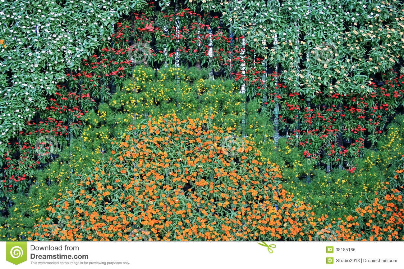 Flower wall vertical garden royalty free stock image image 38185166