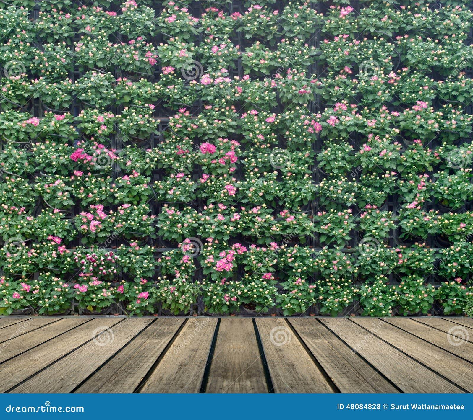 Flowers vertical garden wall royalty free stock for Flower wall garden