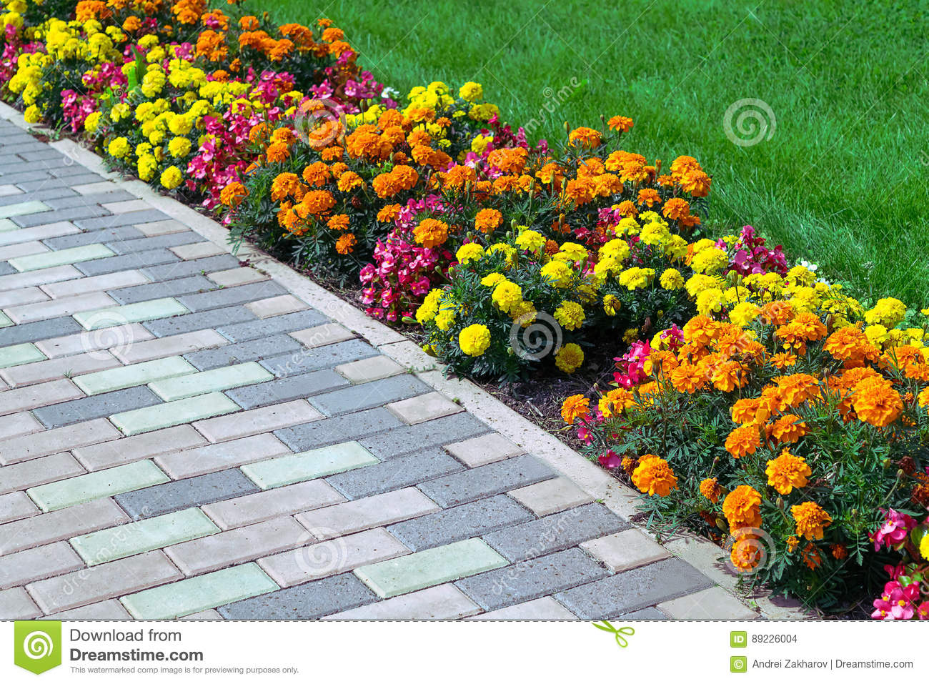 Flowerbed Of Different Colors Arranged Along The Edge Of The Green