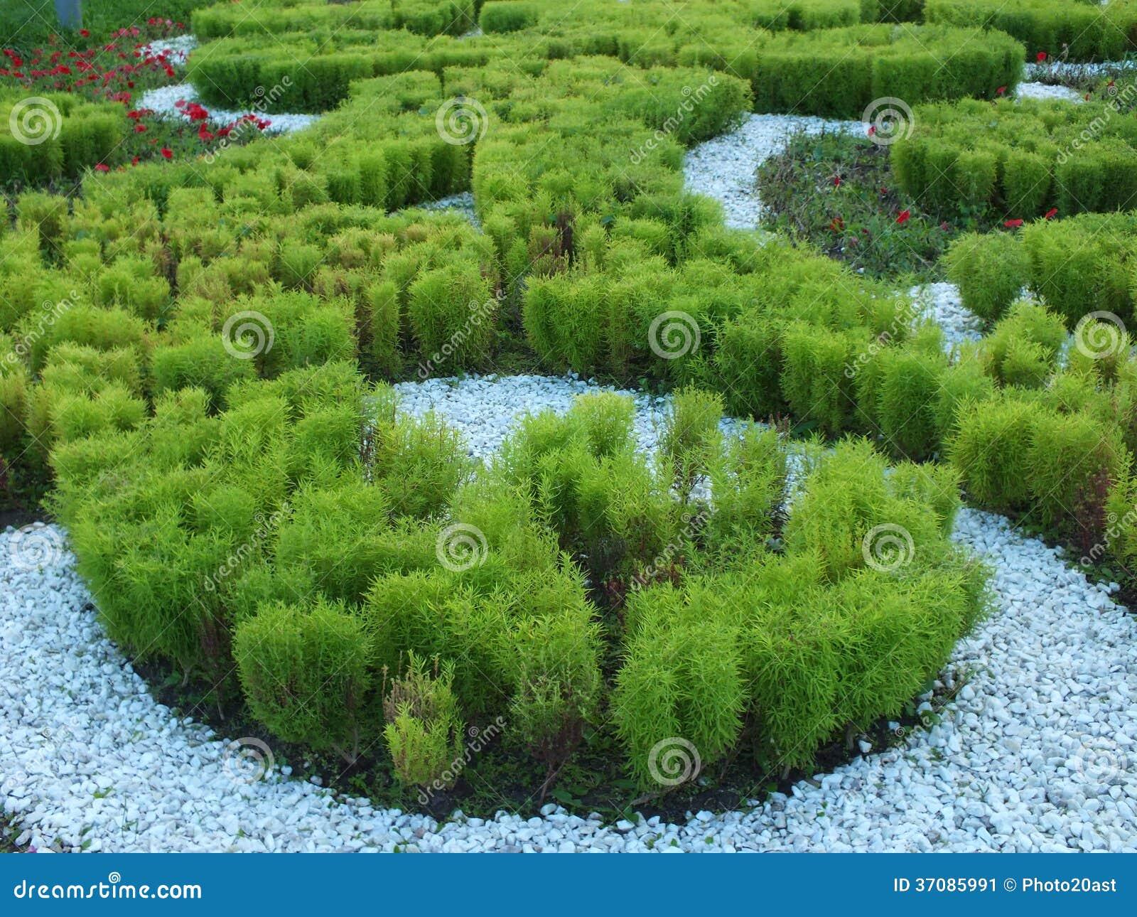 Download Flowerbed Z Dekoracyjnymi Roślinami Obraz Stock - Obraz złożonej z firmant, zdobienie: 37085991