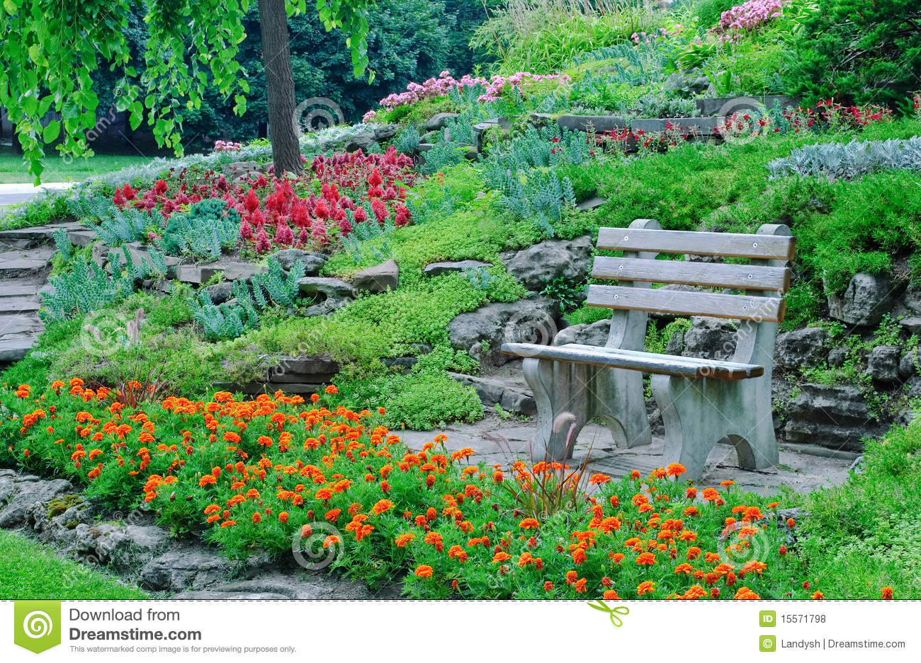 Flowerbeds Decorative Plants In A Park Royalty Free Stock