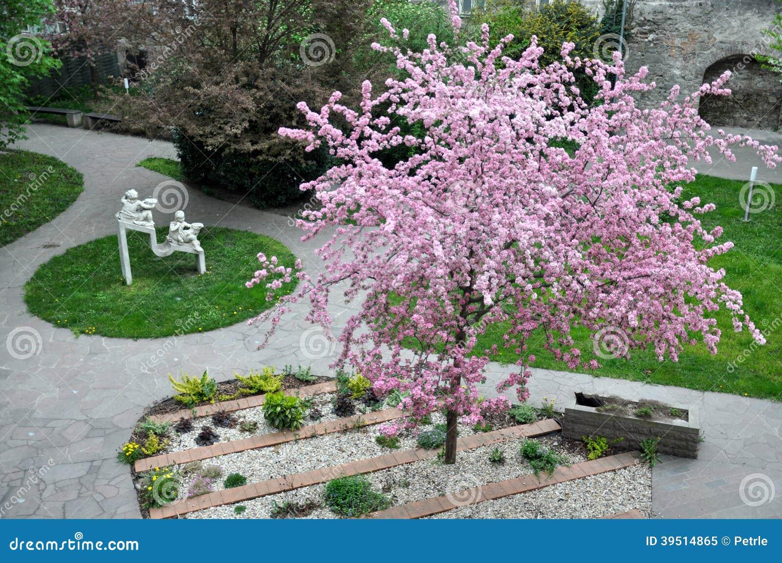 Flowering park and garden