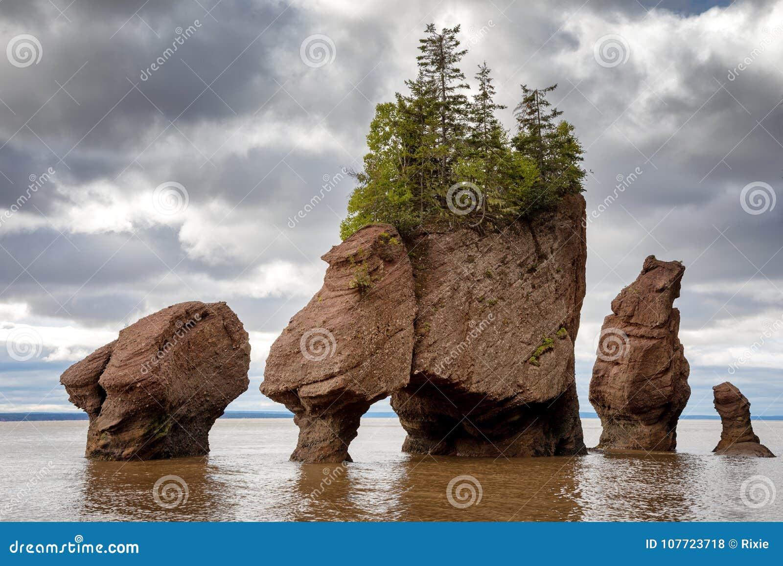 Bay Of Fundy Camping >> Flowerpot Rocks Of Hopewell New Brunswick Stock Photo Image Of