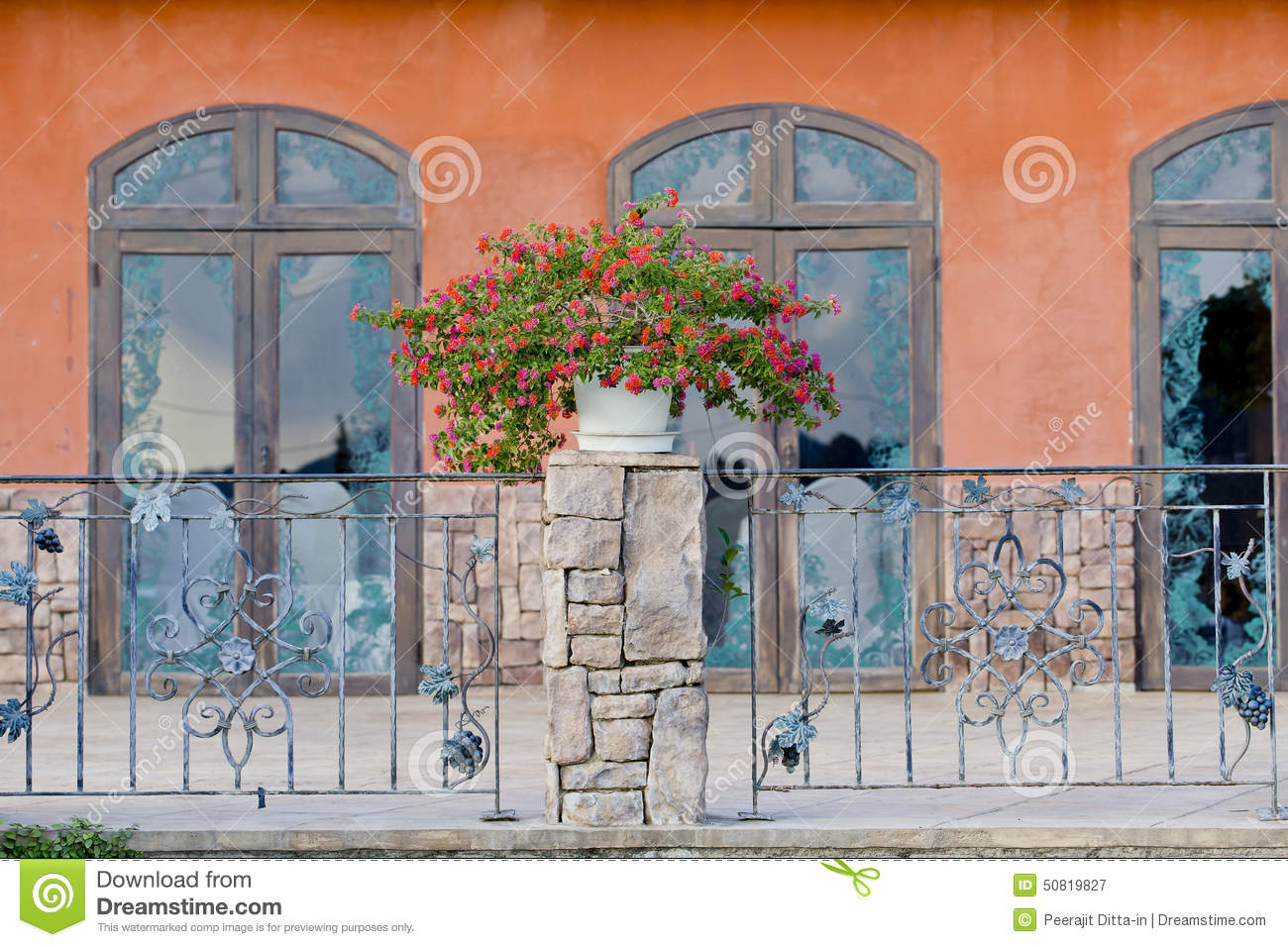 Colorful Residential House With Plants Royalty Free Stock