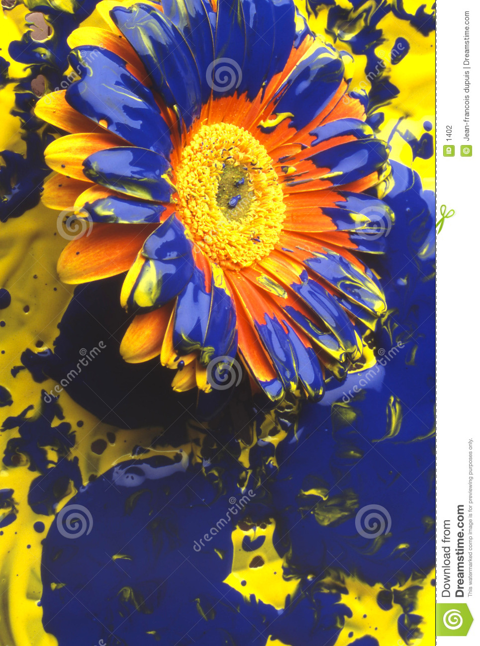 Download Flowers stock photo. Image of painted, concept, colour, srping - 1402