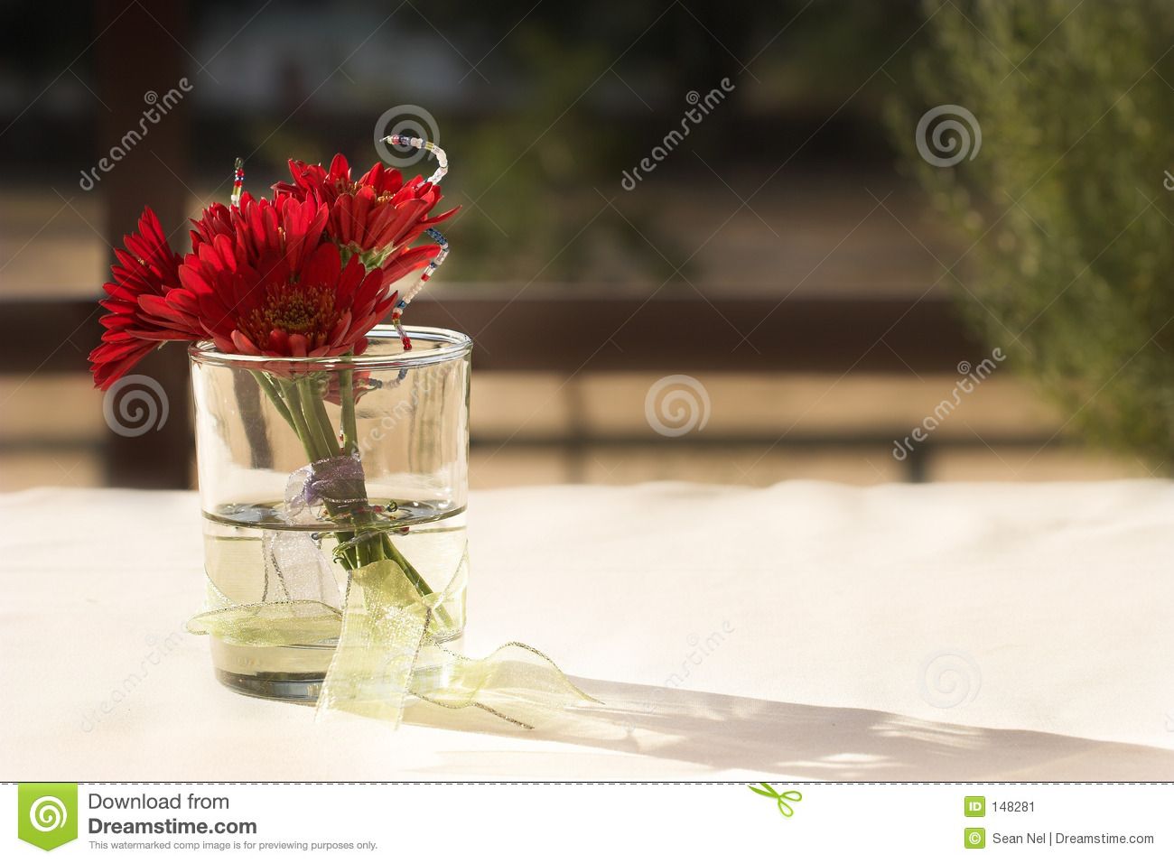 Download Flowers #2 stock image. Image of flowers, sunshine, daisy - 148281