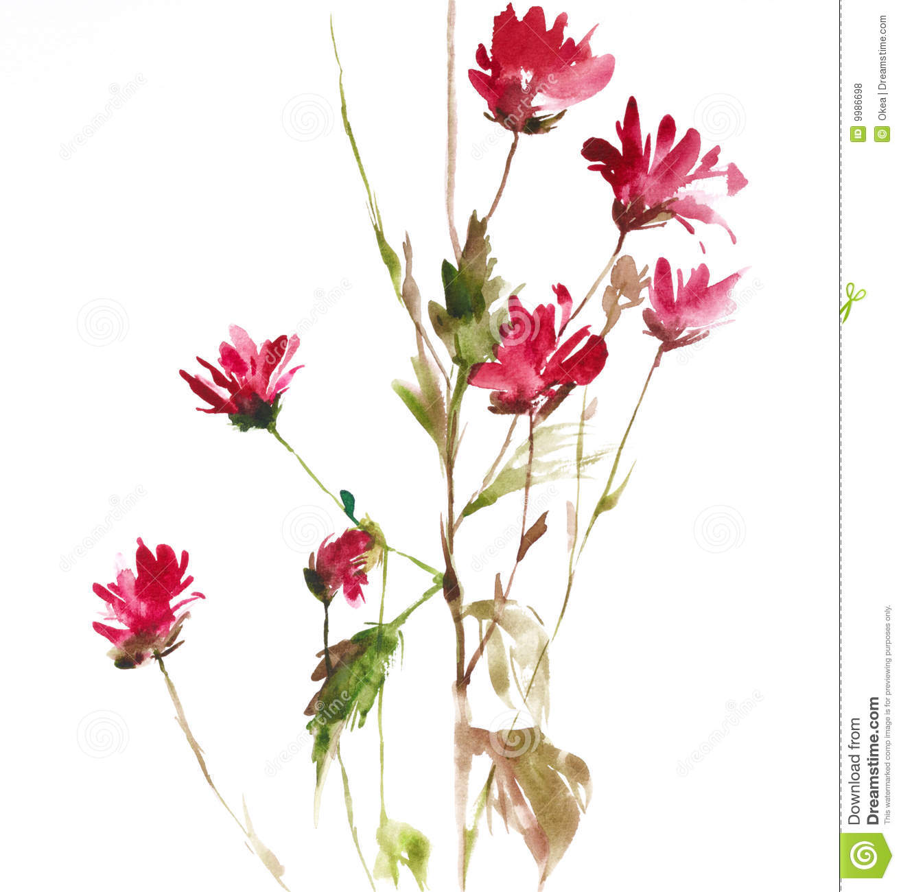 Download Flowers stock illustration. Illustration of branches, watercolor - 9986698